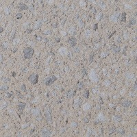 14020A-Heavy Sandblast Concrete Finish Color